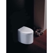 Toilet Round White Ceramic Floor Toilet Scarabeo 8210