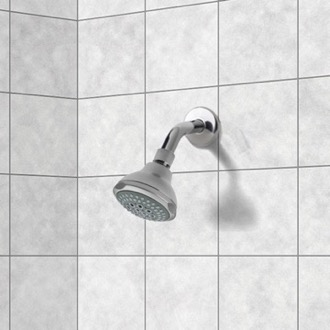 Shower Head Chrome 2 Function Shower Head with Shower Arm Remer 342-355FO