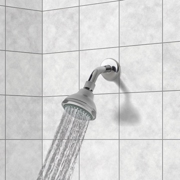 Chrome 2 Function Shower Head with Shower Arm