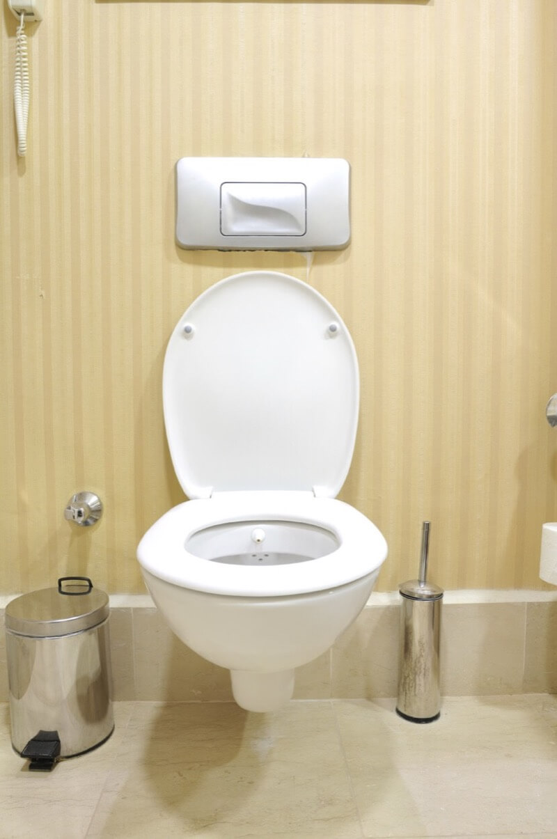 Lever or Button Flush Toilet - Which Is Ideal for You ...
